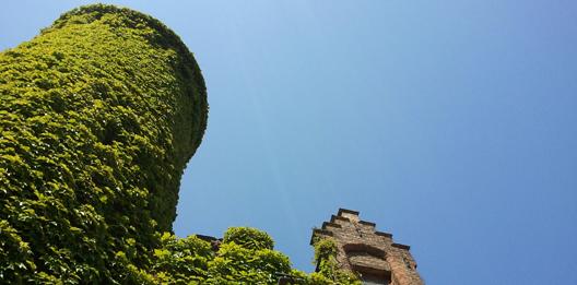 blog over omgevingspsychologie