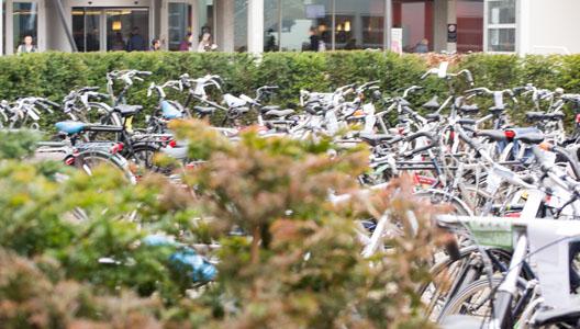 onoverzichtelijke fietsenstalling
